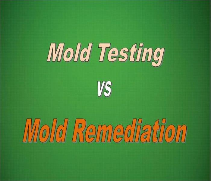 We Do Not Test For Mold – We Only Remediate