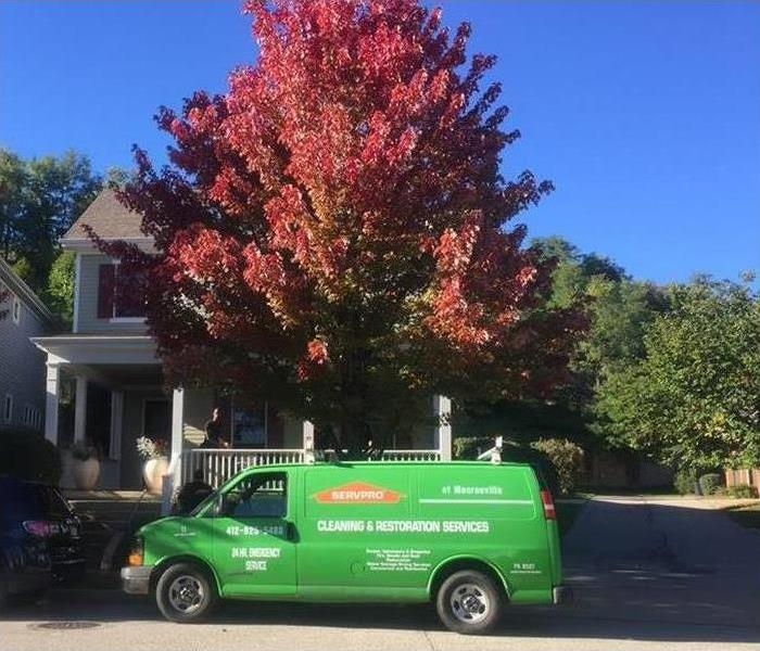 Mold Remediation For Immediate Service in South Hills, Call SERVPRO