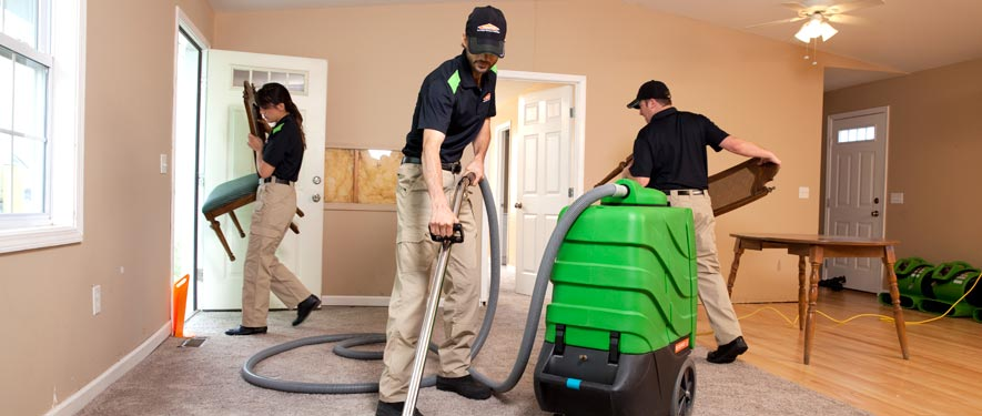 Mt Lebanon Township, PA cleaning services